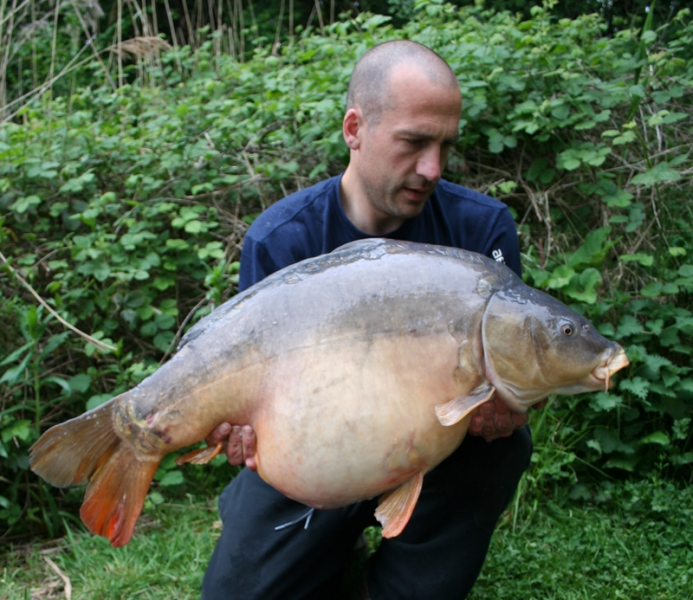 The Grey Fish, 41lb 12oz, Brickyards