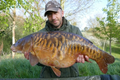 The Fully, 30lb