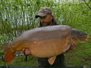 Penny Scale 48lb 6oz, Essex