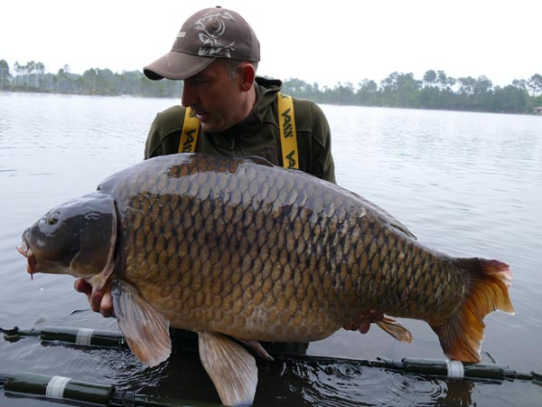 Eric's Common at 86lb 8oz from Rainbow Lake, France