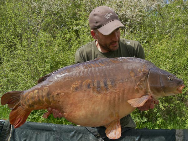 The Four By Four, 56lb 12oz, Church Lake, Essex, caught on The Key