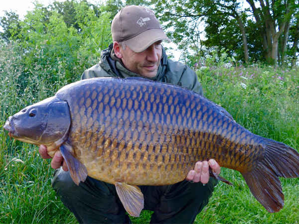 The Perfect Common 31lb, Emmotland, East Yorkshire