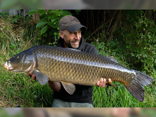 A torpedo-shaped common from the River Lot in France caught on SLK & Captive hooklink